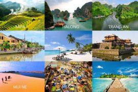 Tổ chức tour du lịch